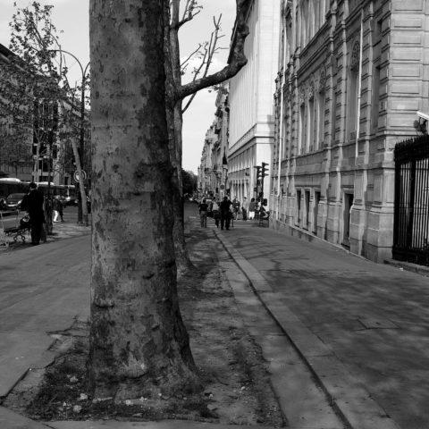 Paris 20111 _1711